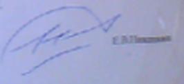 2015-06-30_130213-подпись- Е.В. Никанкин а