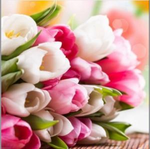 2016-03-07_182027-к теме-цветы